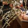 Settimana Santa: definito il programma delle celebrazioni vescovili